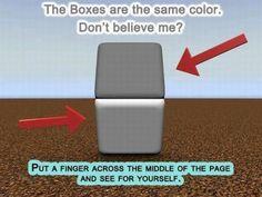 I love a good optical illusion