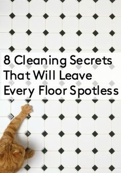 14 Clever Deep Cleaning Tips & Tricks Every Clean Freak Needs To Know Deep Cleaning Tips, House Cleaning Tips, Diy Cleaning Products, Cleaning Solutions, Spring Cleaning, Cleaning Hacks, Clean Baking Pans, Cleaning Painted Walls, Natural Cleaners