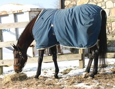 Stop Blanket Zap! Some horses react badly to static electricity zaps when blankets are removed.