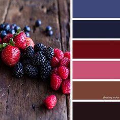 Shades Of Fresh Berries (Photo Credit • halfbakedharvest.com) #chasingcolor…