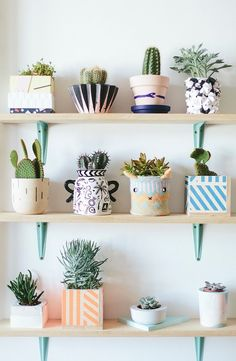 Pretty little planters.