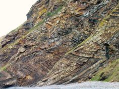 Chevron folds (here: Millook Haven, North Cornwall, UK) develop in response to regional or local compressive stress when the bedding regularly alternates between contrasting competences.