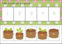 Spring Math Centers for Kindergarten Kindergarten Centers, Kindergarten Science, Math Centers, Preschool, Easter Activities, Math Activities, Vegetable Crafts, Nursery Teacher, School Community