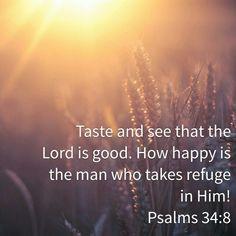 Psalm 34:8 HCSB