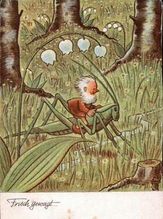 Little Elf Riding a Grasshopper Postcard, Published by Hans Glogner…