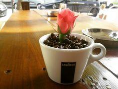 Coffeeshop coffee