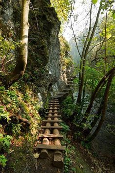 The wooden path in Slovenský Raj National Park, Slovakia. It's really beautifull. Slovensky Raj means Slovakians Paradise. Oh The Places You'll Go, Places To Travel, Places To Visit, Travel Destinations, Bratislava, Beautiful World, Beautiful Places, Wonderful Places, Wooden Path