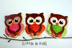 Owl cookies by Rollin in Dough