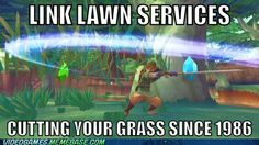 Link is your man for the job