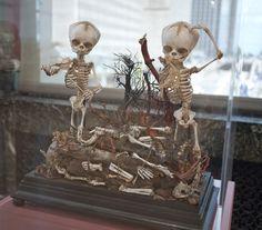 "Morbid Anatomy: ""Morbid Curiosity: The Richard Harris Collection,"" Through July 8, Chicago Cultural Center: Exhibition Report"