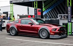 RTR Mustang 5.0. Good pin to start the board.