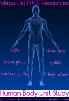 Mega List Free Resources for Human Body Homeschool Unit from Tina's Dynamic Homeschool Plus
