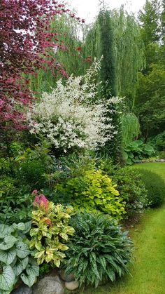 Trendy patio landscaping on a hill 31 ideas Cottage Garden Design, Garden Landscape Design, Forest Hills Gardens, Landscaping On A Hill, Garden Yard Ideas, Woodland Garden, Shade Garden, Dream Garden, Garden Planning