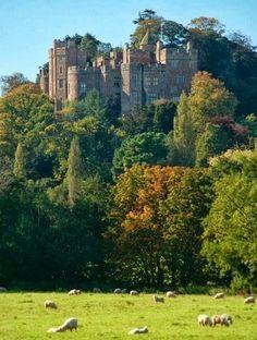 pagewoman:  source Dunster Castle, Exmoor, Somerset, England.