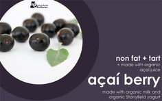 Açaí Berry Frozen Yogurt
