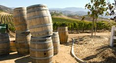 Wine Destinations Sonoma County - Sonoma County, just a short drive north from San Francisco's Golden Gate Bridge in California, is a traveler's paradise. Click here to see http://www.travelpackagediscount.com/wine-destinations-sonoma-county/more