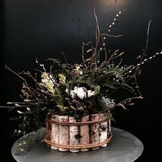 The finished festive container! Woodland Flowers, Winter Festival, Garden Inspiration, House Plants, Decorating Your Home, Floral Arrangements, Beautiful Homes, Planter Pots, Christmas Decorations