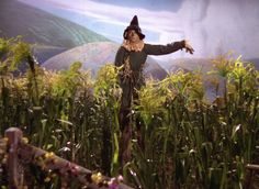 The traditional scarecrow was made famous in the story of the Wizard of Oz. Learn more about scarecrows and about how to make a scarecrow. Wizard Of Oz Quotes, Wizard Of Oz Movie, Wizard Of Oz 1939, Scarecrow Pictures, Scarecrow Ideas, Wizard Of Oz Pictures, Scarecrow Wizard Of Oz, Broadway, Land Of Oz