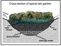 A well-designed rain garden will drain in a day, so mosquito larvae will not have a chance to hatch. Native plants are the best choice for rain garden… - Alles über den Garten Bog Garden, Water Garden, Shade Garden, Garden Stream, Rain Garden Design, Patio Design, Water Collection System, Patio Diy, Jardin Decor