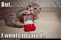 ....I guessss since you went to Jared...