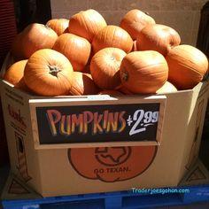 トレーダージョーズのパンプキン  Trader Joe's Pumpkin