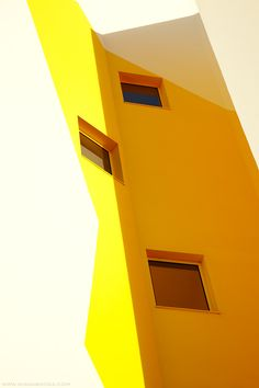 Yellow, photography by Diana Bodea