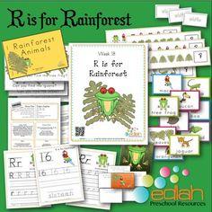 preschool rainforest lesson plans 1000 images about r is for rainforest on 195