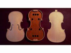 Violin violinmaker violinmaking