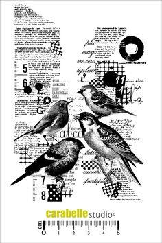 Tampon : Collage avec des oiseaux - CARABELLE STUDIO