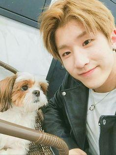 Is it just me or does Jinjin look like a puppy. Astro Kpop Group, Jinjin Astro, Park Jin Woo, Astro Wallpaper, Astro Fandom Name, Sanha, Lee Dong Min, Wattpad, Online Pet Supplies