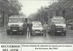 En el Paseo de Linarejos.