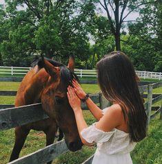 - Art Of Equitation Cute Horses, Pretty Horses, Horse Love, Beautiful Horses, Horse Girl Photography, Photography Poses, Horse Photos, Horse Pictures, Foto Cowgirl