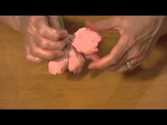 How to Make A Gumpaste Peony (Part 5) - YouTube