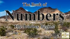 """What is the book of Numbers all about? Why is the book of Numbers relevant to today's modern-day Christian? Why doesn't the Church today by in large teach the book of Numbers? What is the """"Law"""" exactly and why does it matter? Why is the journey that the house of Israel made through the wilderness so vitally important for us all to understand? Book Of Numbers, 12 Tribes Of Israel, Chapter One, Old Testament, It's Meant To Be, Thing 1 Thing 2, Wilderness, The Book, Leadership"""