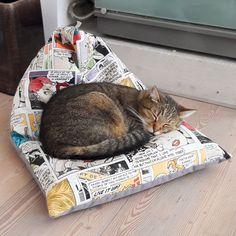 Bean Bag, Comics, Cats, Happy, How To Make, Animals, Tomy, Pet Dogs, Handmade