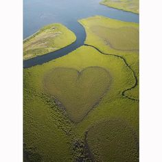 Hearts in nature: naturally occurring and man-made heart shapes photographed from the air - Telegraph