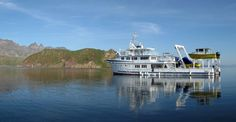 The Argo is the perfect vessel for Liveaboard diving in Costa Rica & Cocos Islands