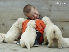 I don't know what is more cute: the puppy kisses or the puppy butts!