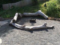 Gathering area-- fire pit? magic potions? stone soup?