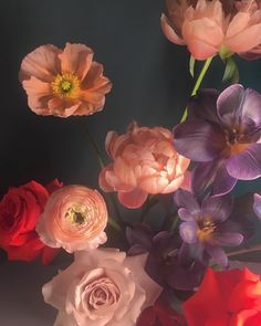 'blossom brigade' by floral designer/photographer Doan Ly ( // Nature Aesthetic, Flower Aesthetic, No Rain, Floral Photography, Aesthetic Wallpapers, Planting Flowers, Floral Arrangements, Beautiful Flowers, Colorful Flowers
