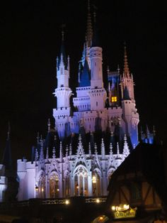 No Joking about Disney ~ Going to Disney is a serious matter