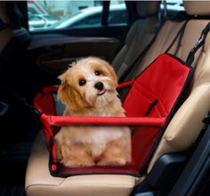 Pet Car Seat cover Carrier Airline Approved For Dogs ! Get yours here ➩➩   http://amzn.to/2pVo8pu
