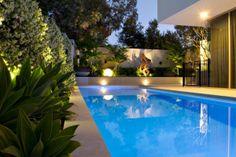star jasmine creepers alongside the pool