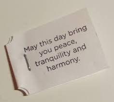 Let your Tuesdays be tranquil, tremendous, thrilling....  10-11am Medical Chi Kung w/Sifu JC $10  2-3pm Beginner Tai Chi for Seniors w/Doris $5  3-4pm Tai Chi Fan w/Doris $5  5-6pm Tao Yoga w/Carla $10  6-7pm Tai Chi Yang Style w/Sifu JC $10  7-8pm Wellness Class w/Louise $20 #NOHC #ChiKung #TaiChi #Yoga #Wellness #Health #Fitness