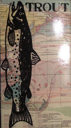 matchbox fish