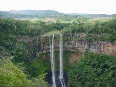 ecosistemas de una cascada - Buscar con Google