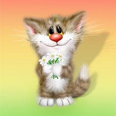 Xenopus - Katze