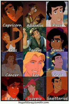 Disney Prince Signs-thought this was cool. I really like astrology sternzeichen verseau vierge zodiaque