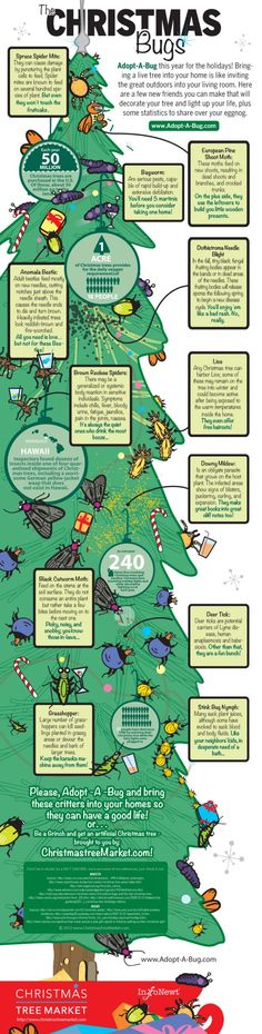 The Christmas Bugs [infographic] A live tree may invite long term holiday visitors. Adopt-A-Bug-Program Live Christmas Trees, Christmas Love, Christmas Lights, Christmas Ideas, Xmas Trees, Christmas Crafts, Christmas Trivia, Favorite Christmas Songs, Information Design
