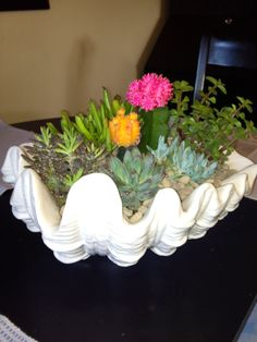 Centerpiece...just bought the shell planter at TJMAXX ($20) Home Depot for the succulents and pea pebbles. Add a little cactus/palm soil in the bottom place succulent next, fill with more soil, top with pea pebbles, easy and long lasting! Have fun...